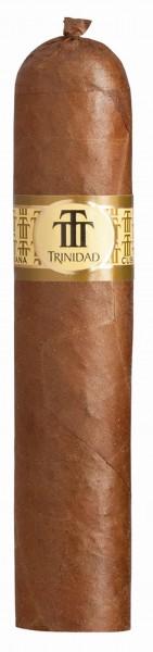 Trinidad Vigía