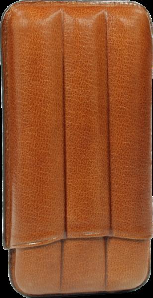 Martin Wess 3er Etui Robusto - 491 HA